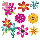 Colorful Hawaiian flower set stock illustration