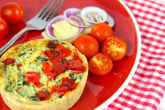 Colorful Healthy lunch. Quiche, cheese, tomatoes, red onion. On a vibrant red plate on a gingham cloth background Royalty Free Stock Photos