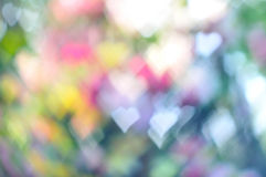 Colorful heart bokeh background Stock Photos