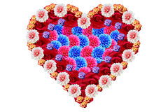 Colorful heart with flowers Royalty Free Stock Images