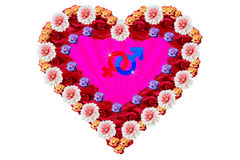 Colorful heart with gender signs Royalty Free Stock Photo