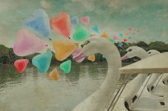 Colorful heart love balloon float on air with swan pedal boat at Stock Photo