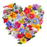 Colorful Heart made with Garden Flowers Stock Photos