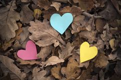 Colorful hearts and nature. Stock Photography