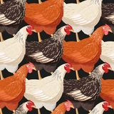 Colorful hens seamless stock illustration
