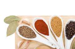 Colorful herbs and spices selection Royalty Free Stock Photography