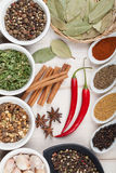 Colorful herbs and spices selection Stock Photos