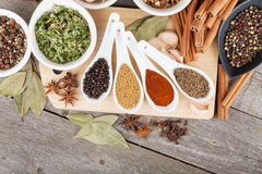 Colorful herbs and spices selection Stock Images