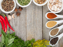 Colorful herbs and spices selection. Aromatic ingredients on wood table with copyspace stock photography