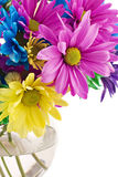 Colorful High Key Flowers Stock Photo