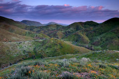 Colorful hills. Vivid colors of the hills illuminated by the sunset Stock Photos