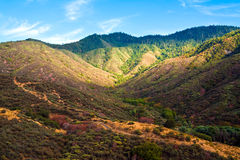 Colorful Hills in King's Canyon Stock Photography
