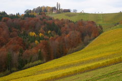 Colorful hilly area in southern styria - autumn Stock Photos