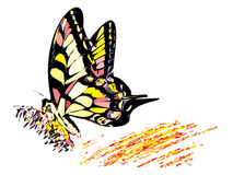 Colorful hippy butterfly. Sitting on the flower vector illustration