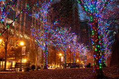 Colorful Holiday Lights Adorn Trees In Midtown Atlanta Royalty Free Stock Photography