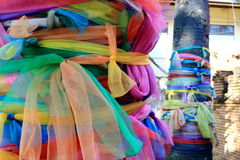 Colorful Holy Fabric Wrapped Around Coconut Tree, Thai Superstitions and Beliefs Royalty Free Stock Photos