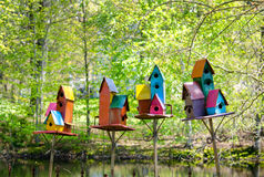 Colorful homes for birds Stock Photos