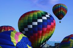 Colorful Hot Air Balloons. A beautiful group of hot air balloons prepares to launch Royalty Free Stock Image