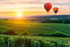 Free Colorful Hot Air Balloons Flying Over Champagne Vineyards At Sunset Montagne De Reims Royalty Free Stock Photography - 107516367