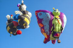 Colorful hot air balloons Stock Image