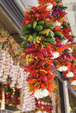 Colorful Hot Chili Peppers and Garlic Bunches Royalty Free Stock Images