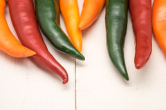 Colorful hot chili Stock Images