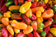 Colorful Hot Peppers Royalty Free Stock Photography