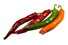 Colorful hot peppers Royalty Free Stock Photos