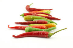Colorful hot peppers in a row Royalty Free Stock Images