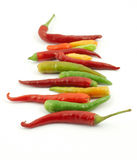 Colorful hot peppers in a row Stock Photos