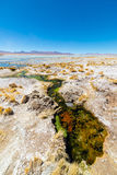 Colorful hot spring on the Andes, Bolivia Stock Image