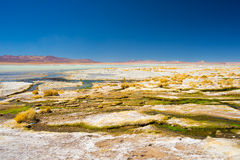 Colorful hot spring on the Andes, Bolivia. Colorful hot spring with deposits of minerals and algae on the Andean Highlands, Bolivia. Salt lake, mountain range Royalty Free Stock Photos