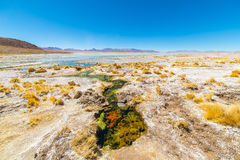 Colorful hot spring on the Andes, Bolivia. Colorful hot spring with deposits of minerals and algae on the Andean Highlands, Bolivia. Salt lake, mountain range Stock Image