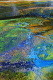Colorful hot spring deposits Stock Image