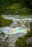 Hot springs at Waiotapu Thermal Wonderland, New Zealand. Colorful hot springs at the geothermal area of Waiotapu Thermal Wonderland, North Island, New Zealand royalty free stock image
