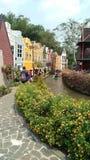 Colorful stock photos