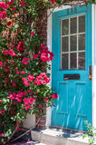 Colorful house door surrounded by flowers. City's detail of architecture. Beautiful exterior door of a house in the city Royalty Free Stock Photo