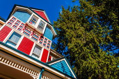 Colorful house and pine tree in Gettysburg, Pennsylvania. royalty free stock images