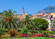 Colorful houses, green trees and palms in Menton. Catholic church's bell tower and colorful houses under blue sky as seen through green palms and trees in Royalty Free Stock Photography