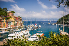 Colorful houses in the harbour. Portofino Royalty Free Stock Photos