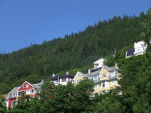 Colorful houses on the hillside amongst deep green trees, Bergen, Norway Stock Photography