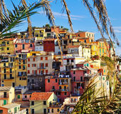Colorful houses at Italian Riviera. Colorful houses in Manarola, Cinque Terre, Italy Royalty Free Stock Image