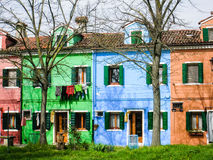 Colorful houses, leafless trees, green grass, Burano. Brightly multicolored painted houses with foreground of leafless trees and green lawn in a quiet area of stock image