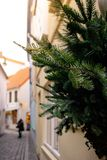 Colorful houses and narrow streets with Christmas decoration and lights in historic Schnoorviertel in Bremen. Christmas trees, wooden table, candlesticks royalty free stock photography