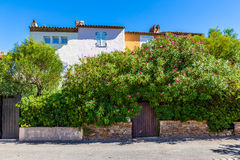 Colorful Houses And Plants In Port Grimaud-France stock photos