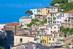 Colorful houses, riomaggiore Stock Images