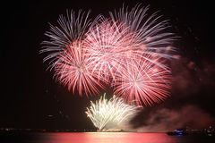 Fireworks-display-series_48 Royalty Free Stock Photo