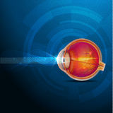 Colorful human eye, normal sight abstract design. Colorful Anatomy of the eye, normal sight abstract blue illustration Stock Image