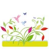 Colorful humming-bird Royalty Free Stock Photos