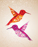 Colorful humming birds illustration. Stock Images